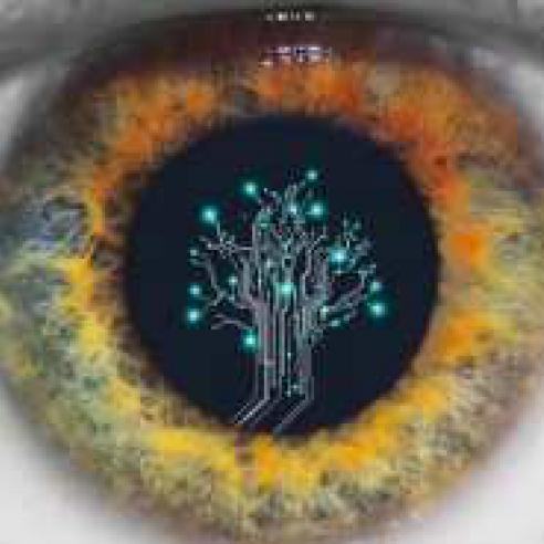 Neuro Ophthalmology Research To Prevent Blindness