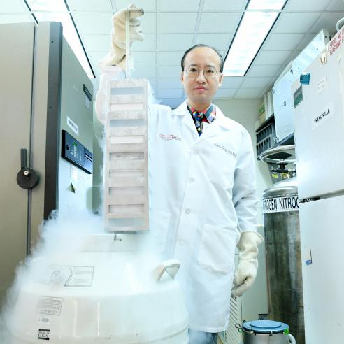 Dr. Stephen Tsang at work in the lab.