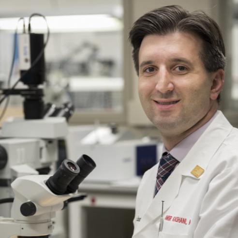 Dr. Amir Kashani