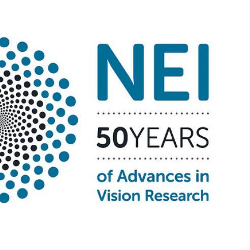 NEI 50th anniversary logo