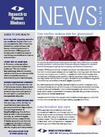 Eye Research News Fall 2012