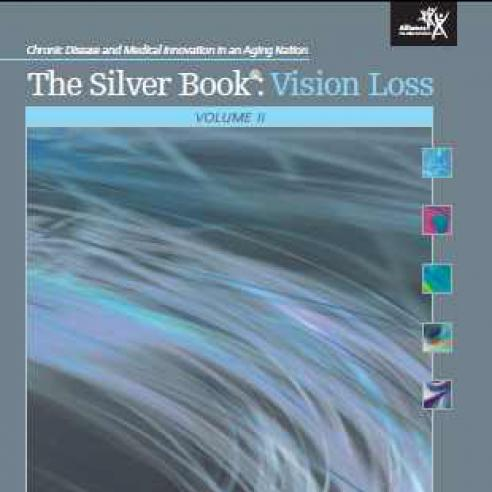 Cover of The Silver Book: Vision Loss Report