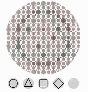 Test for Color Blindness  Research to Prevent Blindness
